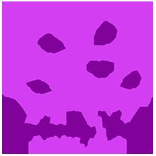 cbv_cakes_by_violet_cbv_logo_website